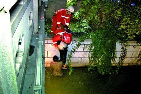 男子水中托举坠河爱犬两小时 消防员:狗会游泳
